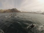 The Unalaska welcoming committee