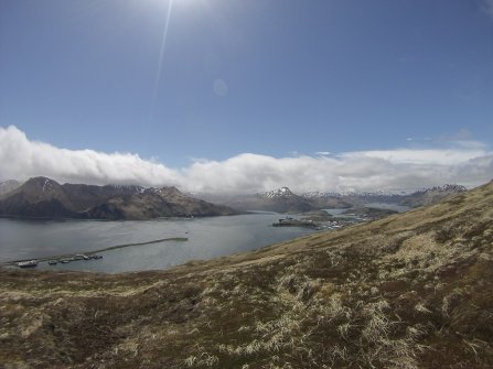 view of dutch harbor from mt. ballyhoo